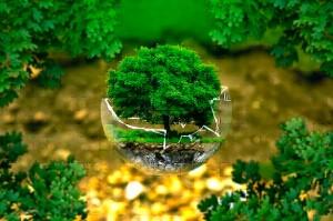 Climamania con el medio ambiente