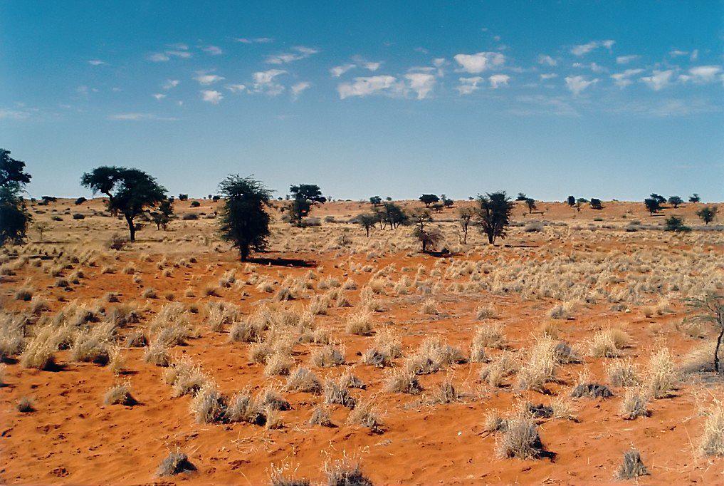 Kalahari_encender-aire-acondicionado