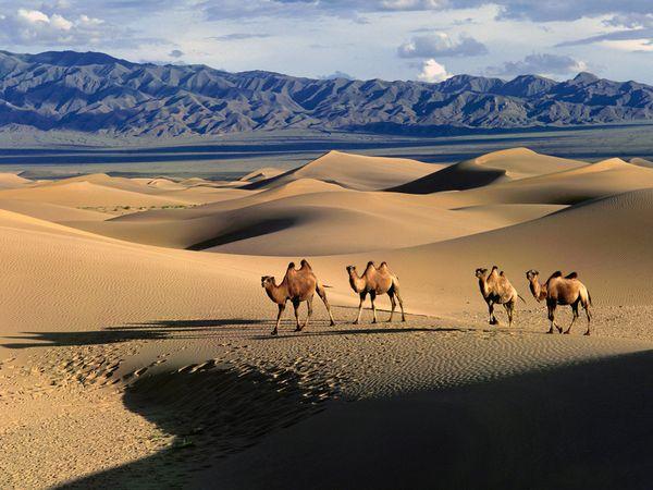 gobi desierto - encender aire acondicionado